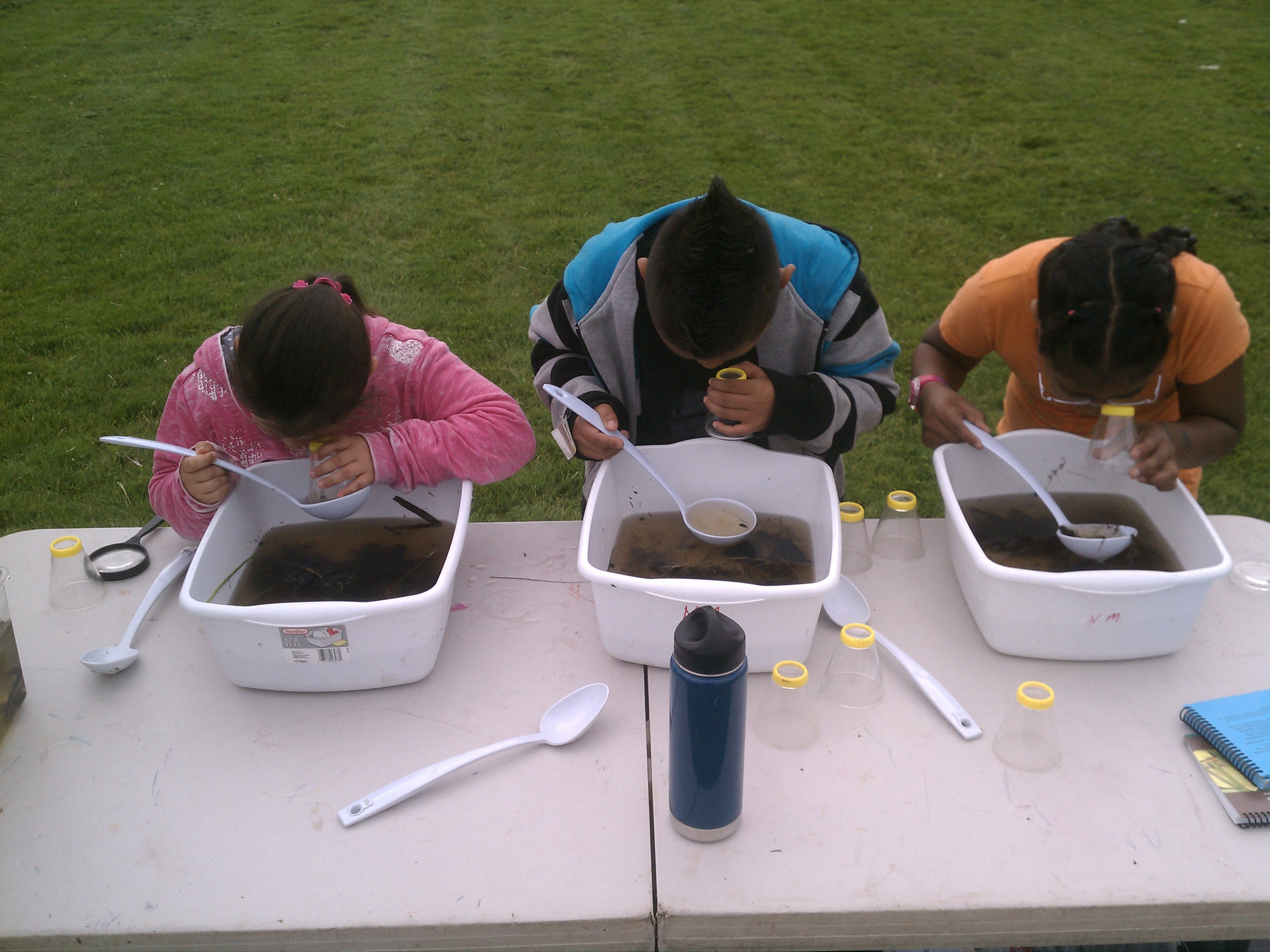 Nature science stations create fun and interactive learning opportunities at your event!
