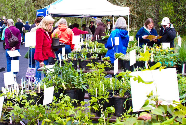 Tualatin Hills Nature Center to host Spring Native Plant Sale April 25