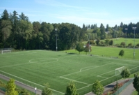 Synthetic turf replacement set for HMT field 2