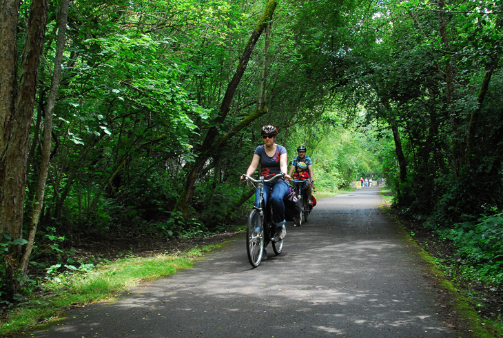 The Fanno Creek Trail is one of THPRD'€™s most used trail systems, serving people interested in recreation, nature exploring or a non-motorized transportation corridor.