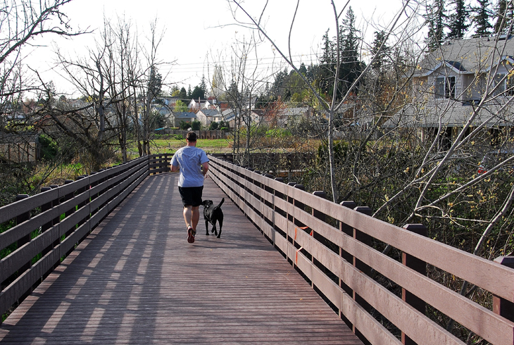 The Waterhouse Trail extends north/south along the powerline corridor, from Tualatin Hills Nature Park to North Bethany.